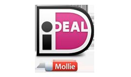 Veilig betonzand betalen met iDeal van Mollie